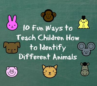 10 Fun Ways to Teach Children How to Identify Different Animals