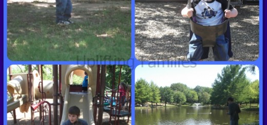 10 Family Friendly Activities to Play at the Park