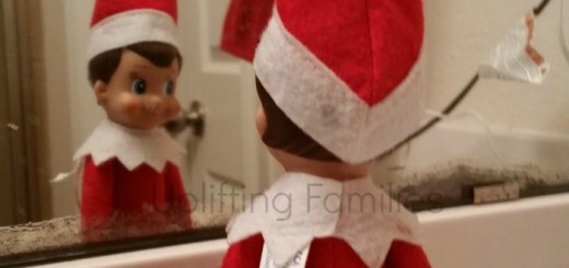 Elf on the Shelf Selfies and Ideas