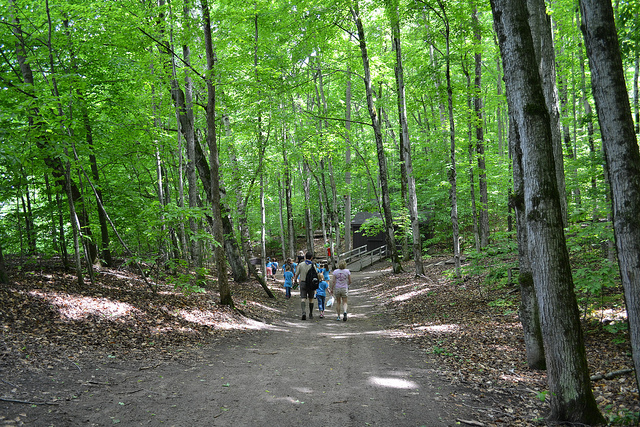 how to choose a summer camp for your child