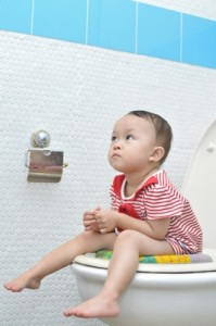 Potty Training a Toddler