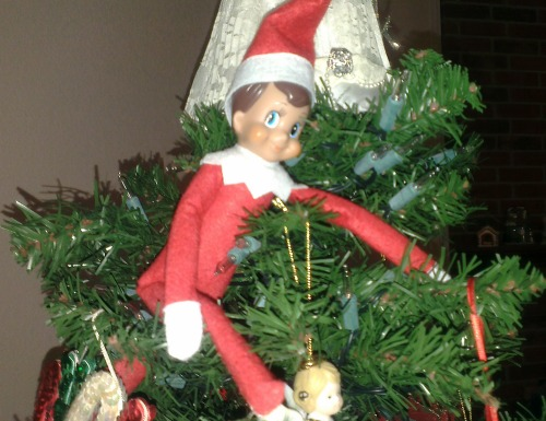 Elf on the Shelf Rascal in the Christmas Tree