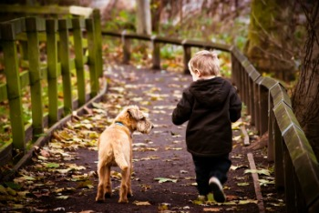 Learn How Young Children and Pets Respond to Stressful Situations
