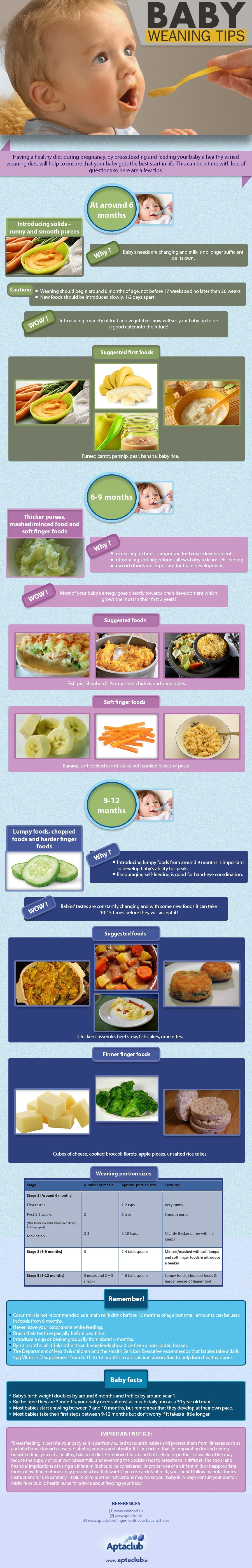 Aptaclub_BABY_FEEDING_TIPS_INFOGRAPHIC