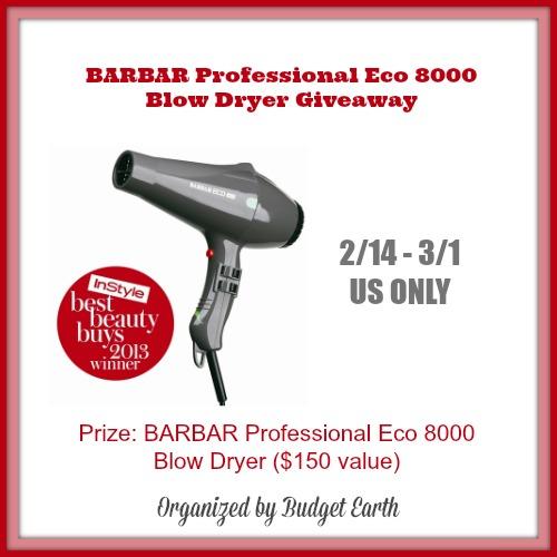 Eco 8000 Blow Dryer Giveaway