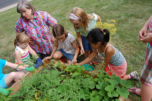 Garden Activities for the Children this Summer