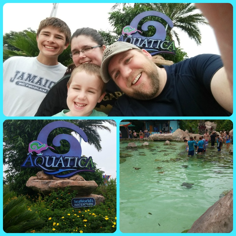 Aquatica at Sea World